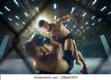 Getting trophy. Two professional fighters posing on the sport boxing ring. Couple of fit muscular caucasian athletes or boxers fighting. Sport, competition and human emotions concept.