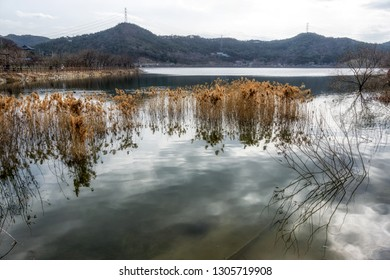 Geumpyeong Reservoir Park trails and tracks and surrounding nature. Geumpyeong reservoir is located in Gimje, Jeollabukdo province, South Korea