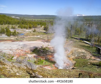 Geyser eruption in landscape variably covered by mineral deposits, rock, forest and mountains at Yellowstone National Park, USA