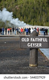 Geyser field in Yellowstone national park. Steam and smoke from the geysers. Old Faithful geyser and silhouettes of people