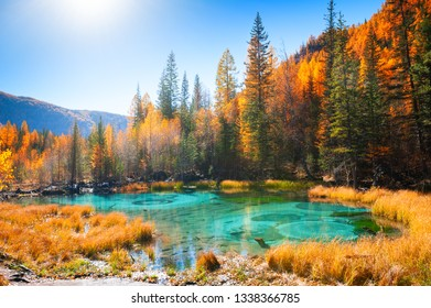 Geyser lake with turquoise water in Altai republic, Siberia, Russia. Famous tourist destination in Altai mountains. Autumn forest and blue sky, beautiful landscape.