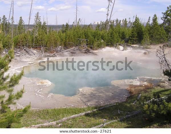 Geyser Yellowstone - Wyoming
