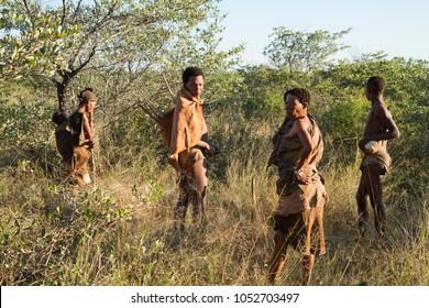 GHANZI, BOTSWANA - MAY 14: san bushman show people how they gather food in  the kalahari desert in botswana may 14, 2017 in Ghanzi, Botswana