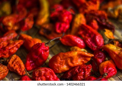 Ghost chilies are the hottest spice of the world