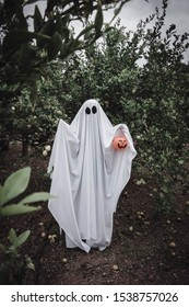 Ghost covered with a white ghost sheet on a forest with halloween pumpkin candy jar. Halloween Concept
