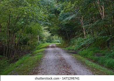 Ghost town trail located in Heshbon, Pennsylvania. A rails to trails location. Natural, scenic views.