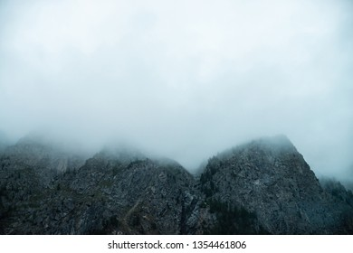 Ghostly giant rocks with trees in thick fog. Mysterious huge mountain in mist. Early morning in mountains. Impenetrable fog. Dark atmospheric eerie landscape. Tranquil mystic atmosphere of wilderness.