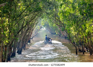An Giang Province, Vietnam - November 18, 2017: Sailing boat in Tra Su flooded indigo forest trees, a preserved forest in the Mekong Delta. Located in Van Giao commune, Bien Bien district