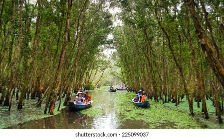 AN GIANG, VIET NAM- OCT 12: Tourist on boat in  Tra Su indigo forest, eco tourist area at Mekong Delta for green ecotourism, hyacinth cover water, tree flooded, Vietnam, Oct 12, 2014