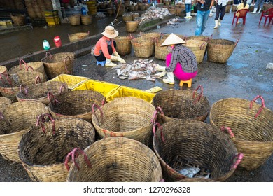 An Giang, Vietnam - Dec 6, 2016: Caught fishes with workers working at Tac Cau fishing port at dawn, Me Kong delta province of Kien Giang, south of Vietnam