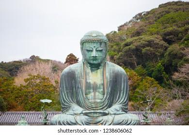 Giant buddha or Kamakura Daibutsu is the famous landmark located at the Kotoku-in temple in Kamakura,Japan