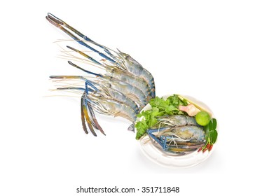 Giant freshwater prawn isolated on white background this has clipping path