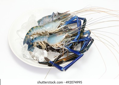 Giant freshwater prawns, The best food and popular in Thailand.