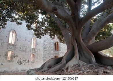 a giant in the garden - Donnafugata castle - Sicily