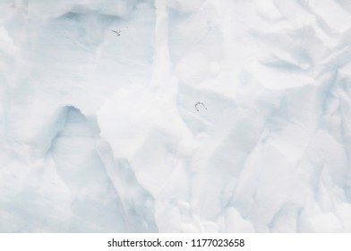 Giant Iceberg in the Arctic Ocean with Gulls Flying in Front of it off the Coast of Norway