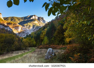 Giant mountain peak covered with forest