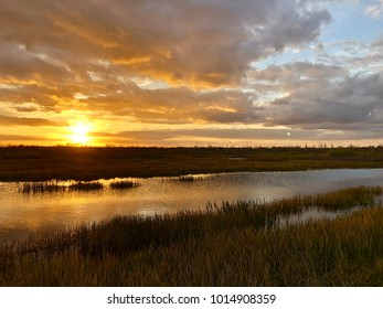 giant orange sun sets behind the bayou of a cypress swamp and reflects in the river
