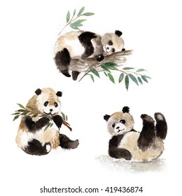 Giant pandas set, watercolor