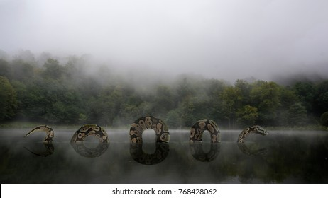 Giant python in jungle lake covered with fog. Mysterious frightening scene. Smoke on the water. Reflection in calm water surface