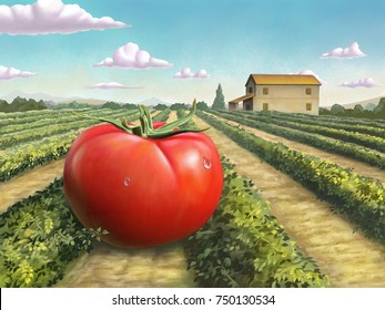 Giant ripe tomato in a rural landscape. Digital painting.