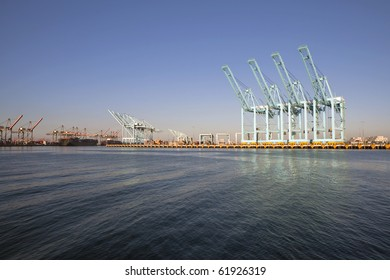 Giant sea cranes sit idle in warm afternoon light.