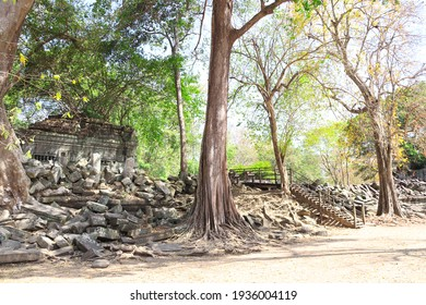 Giant trees on ruin of Koh Ker complex, Cambodia, Indochina. UNESCO world heritage site - Shutterstock ID 1936004119
