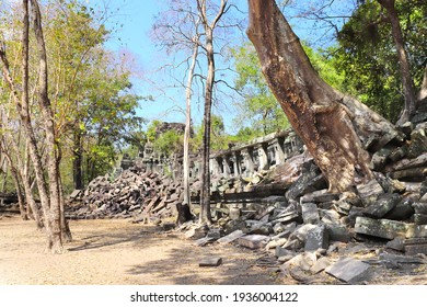 Giant trees on ruin of Koh Ker complex, Cambodia, Indochina. UNESCO world heritage site - Shutterstock ID 1936004122