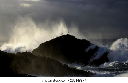 Giant Waves Nature Show breaking against dark colored cliffs, raising a white foam dozens of meters against sky with stormy gray clouds, in a dark green atlantic ocean, with side light of setting sun,
