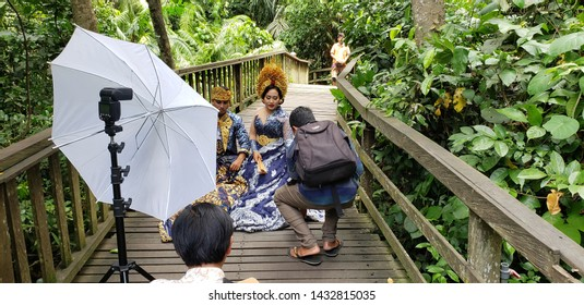 Gianyar, Bali, Indonesia January 18th 2019: Young photographer is taking engagement photos of a loving married couple in the monkey forest.  the bride is wearing beautiful colorful dress