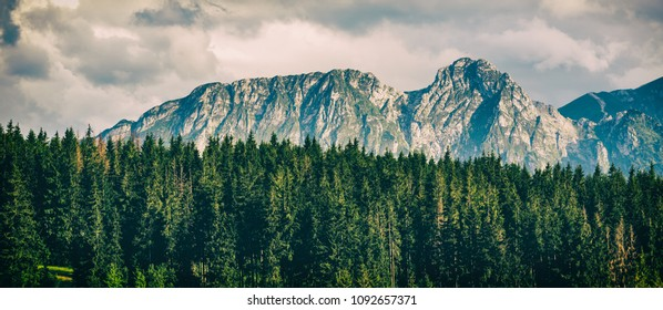 Giewont Mountain, Inspiring Mountains Landscape, beautiful day in summer Tatras, flowers and mountain ridge over blue sky in Zakopane, Poland