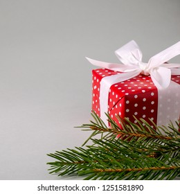 Gift box in red wrapping paper with white polka dots, white bow and spruce twigs on grey background with copy space. Square format