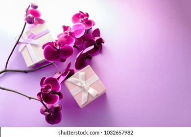 Gift boxes with orchid on purple background