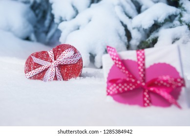 Gift boxes over snow firest background. Valentines day concept.
