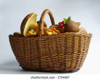 The gifts of nature: Basket full of mushrooms