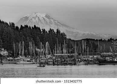Gig harbor, Washington/USA - July 16, 2017: Black and white view of Mount Rainier across the harbor in July.