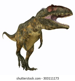 Giganotosaurus Carnivore - Giganotosaurus was a carnivorous theropod dinosaur that lived in Argentina during the Cretaceous Period.