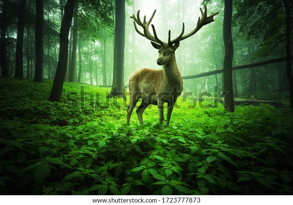 Gigantic deer stands in a magical green foggy forest