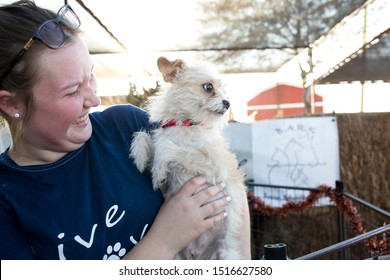 Gilbert, Arizona/USA - September 27, 2019: cute dog gets adopted at Lovepup pet adoption event
