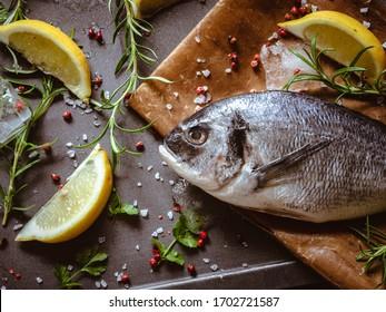 Gilthead, raw food with lemon