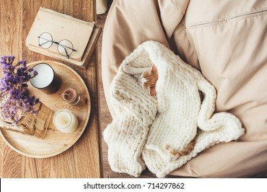 Ginger kitten sleeping on knitted woolen sweater. Wooden tray with home decor near the window. Fall weekend cozy concept.