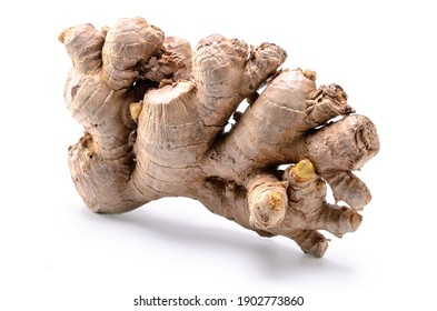 ginger root on white background with soft shadow