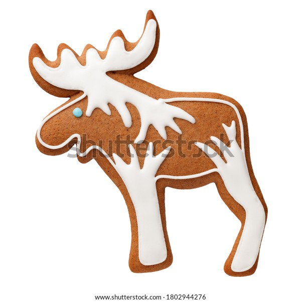 Gingerbread cookie moose isolated on white background. Top view