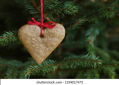 Gingerbread heart hanging on Christmas tree. Holiday, Christmas, xmas, hygge concept. Selective focus.