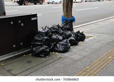 Gingko deciduous leaves on black garbage bags.
