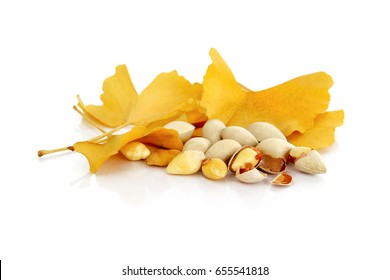 Gingko nuts with yellow gingko leaves on white background (Gingko nuts are used as Chinese herbal medicine ingredient or nutritious supplement)