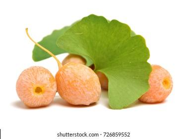 Ginkgo Biloba fruits on white background