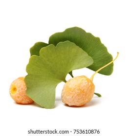 Ginkgo Biloba fruits on white background