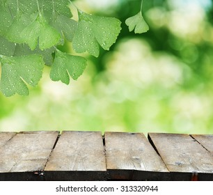 Ginkgo Biloba leaves with natural blurred background and a wooden table
