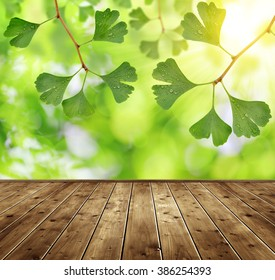 Ginkgo biloba leaves and wooden board