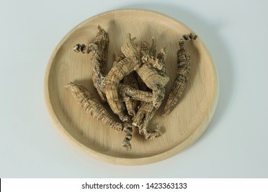 Ginseng Root nuture famer  healthy